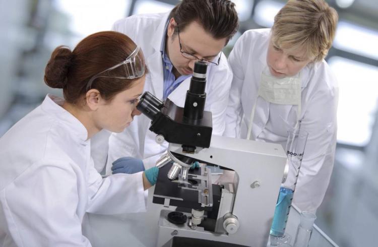 диагностика и лечение в клиниках израиля