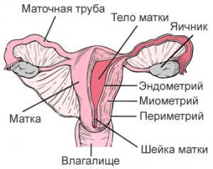 лечение рака эндометрия за границей